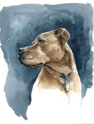 Charlie_watercolor